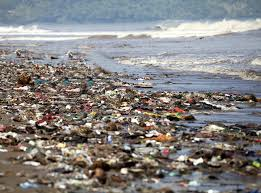 Plastic Pollution in Sea 1 (Independent)